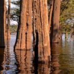 Der Amazonas – eine Expedition durch Peru, Bolivien und Brasilien